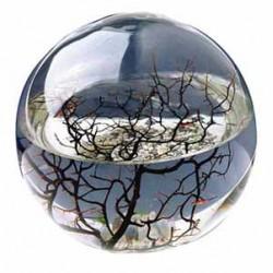 Ekosféra Beachworld 15 cm
