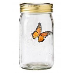 Krásny lietajúci motýľ