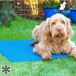 Chladiaca podložka pre psov 40 x 50 cm