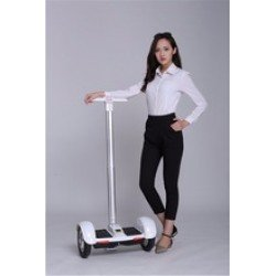 Segway Windrunner Handy