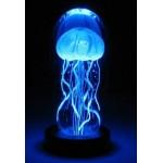 Lampa medúzy