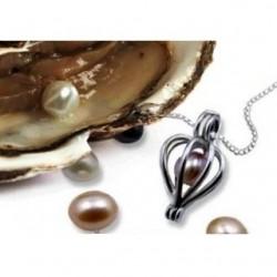 Perla prianí v perlorodke - náhrdelník